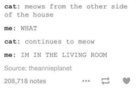 What Cat: cat: meows from the other side  of the house  me: WHAT  cat: continues to meow  me: IM INTHE LIVING ROOM  Source: theannieplanet  208,718 notes