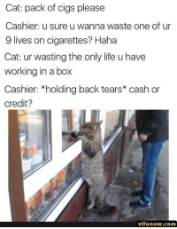 Life, Back, and Haha: Cat: pack of cigs please  Cashier: u sure u wanna waste one of ur  9 lives on cigarettes? Haha  Cat: ur wasting the only life u have  working in a box  Cashier: *holding back tears* cash or  credit?  vifunow.com