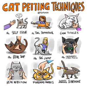 cat petting techniques, illustrated: CAT PETTING TCHNIQUES  @YOYOHA  OH IT'S  the SELF SERVE  the TAIL STRAIGHTENER,  CHIN TICKLES  2.  the BEAR TRAP  GRANDMA  the CHEEK PINCH  the Ski Jump  GOOD. STARSHINE  BEAN INSPECTION  FOREHEAD RUBBIES  MORNIN G cat petting techniques, illustrated