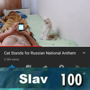 Anaconda, Dank, and Memes: Cat Stands for Russian National Anthem  2.5M views  Slav 100 Putin approves by RudrakshShukla MORE MEMES