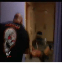 When Stone Cold Steve Austin Locked Triple H in a room with a Rattle Snake !!!!!!!: /Cat When Stone Cold Steve Austin Locked Triple H in a room with a Rattle Snake !!!!!!!