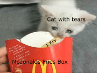 McDonalds: Cat with tears  Mcdonalds Fries Box