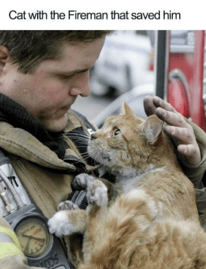 So much love on both of their faces: Cat with the Fireman that saved him  YT  Li  OS So much love on both of their faces