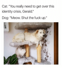 "Funny, Stfu, and Business: Cat: ""You really need to get over this  identity crisis, Gerald.""  Dog: ""Meow. Shut the fuck up."" Mind your business, cat and stfu. 😂 (via: @friendofbae) who's pet has identity issues? Tag someone who's pet isn't normal 😃😂"