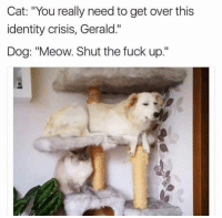 """Gerald: Cat: """"You really need to get over this  identity crisis, Gerald.""""  Dog: """"Meow. Shut the fuck up."""""""