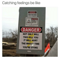 Be Like, Time, and Voltage: Catching feelings be like  DANGER  HIGH VOLTAGE  A DANGER  DANGER  NOT ONLY WILL  THIS KILL YOU  IT WILL HURT  THE WHOLE TIME  YOU'RE DYING