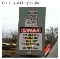 "Be Like, Memes, and Tumblr: Catching feelings be like  DANGER  HIGH VOLTAGE  ADANGER  DANGER  NOT ONLY WILL  THIS KILL YOU  IT WILL HURT  THE WHOLE TIME  YOU'RE DYING <p><a href=""https://memessykingdom.tumblr.com/post/161022942240/dem-memes"" class=""tumblr_blog"">memessykingdom</a>:</p>  <blockquote><h3><i><a href=""http://memessykingdom.tumblr.com"">Dem memes</a></i></h3></blockquote>"