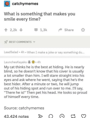 "I'm not cutting onions, you are. via /r/wholesomememes https://ift.tt/2MzHy1W: catchymemes  What is something that makes you  smile every time?  2,2k  1,3k  Share  BEST COMMENTS  Lead5alad 4h When I make a joke or say something du...  LaunchesKayaks 4h  My cat thinks he is the best at hiding. He is nearly  blind, so he doesn't know that his cover is usually  a lot smaller than him. I will stare straight into his  eyes and ask where he went, saying that he's the  best hider. After a minute or two, he will jump  out of his hiding spot and run over to me. I'll say,  ""There he is!"" Then pet his head. He looks so proud  of himself every time.  Source: catchymemes  43,424 notes I'm not cutting onions, you are. via /r/wholesomememes https://ift.tt/2MzHy1W"