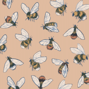 catherinepapeillustration: More bees.: catherinepapeillustration: More bees.