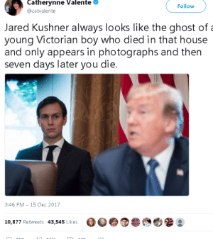 seven days: Catherynne Valente  @catvalente  Follow  Jared Kushner always looks like the ghost of  young Victorian boy who died in that house  and only appears in photographs and then  seven days later you die.  3:46 PM-15 Dec 2017  00  10,877 Retweets 43,545 Likes
