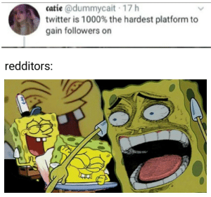 No I don't think so: catie @dummycait 17 h  twitter is 1000% the hardest platform to  gain followers on  redditors:  OF No I don't think so