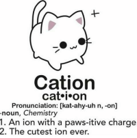Hoe, Hoes, and Tumblr: Cation  cat i on  Pronunciation: [kat-ahy-uh n, -on]  noun, Chemistry  1. An ion with a paws-itive charge  2. The cutest ion ever. You know that bird video that's hella popular rn with Ron and Becky and they call Ben a hoe, I like that video, and the trash talking owls ~ Kay KayReallyLovesKats