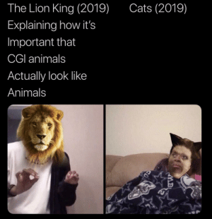 Pretty much by trumpet1992 MORE MEMES: Cats (2019)  The Lion King (2019)  Explaining how it's  Important that  CGI animals  Actually look like  Animals Pretty much by trumpet1992 MORE MEMES