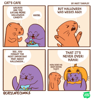 catscafecomics:  Walrus knows what's up.: CAT'S CAFE  BY MATT TARPLEY  WALRUS!  ARE YOU  EATING MORE  HALLOWEEN  CANDY?!  BUT HALLOWEEN  WAS WEEKS AGO!  MAYBE.  SEE..YOU  FORGOT THE  MOST IMPORTANT  PART ABOUT  HALLOWEEN  THAT IT'S  NEVER OVER!  HAHA!  HOW DOES HE  KEEP DOING  THAT?  @CATSCAFECOMICS  WEB  TOON catscafecomics:  Walrus knows what's up.