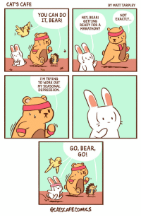 Cats, Work, and Bear: CAT'S CAFE  BY MATT TARPLEY  YOU CAN DO  IT, BEAR!  NOT  EXACTLY  HEY, BEAR!  GETTING  READY FOR A  MARATHON?  )지  不.lu  I'M TRYING  TO WORK OUT  MY SEASONAL  DEPRESSION.  GO, BEAR,  GO!  ECATSCAFECOMICS SAD Bear