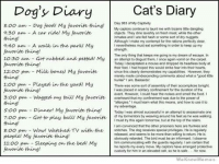 We Know Meme: Cat's Diary  Dog's Diary  8:oo am Dog food My favorite thing!  Day 983 of My Captivity  me with bizarre latte danging  My captors continue to taunt 9:30 am A car ride My favorite  objects. They dine lavishly on fresh meat, while the other  inmates and I are fed hash or some sort of dry nuggets.  thing  Although make my contempt for the rations perfectly clear,  9:40 am A walk in the park My  nevertheless must eat something in orderto keep up my  favorite thing!  The only thing that keeps me going is my dream ofescape. In  10:30 am Got rubbed and petted My  an attempt to disgust them, I once again vomit on the carpet.  favorite thing!  Today decapitated a mouse and dropped its headless body at  their feet I had hoped this would strike fear into their hoats  12:00 pm Milk bonest My favorite since this clearly demonstrates my capabilities However, they  thing!  merely made condesoending comments about what good  hunter larn. Bastardist  1:00 pm Played in the yard My  There was some sort of assembly of their accomplices tonight.  favorite thing!  placed in solitary confinement tor the duration of the  event. However, could hear the noises and smelthe food.  3:oo pm Wagged my taiu My favorite  overheard that my confinement was due to the power of  thing!  'alergies, must learn what this means, and how to use to  my advantage.  s:oo pm Dinner! My  favorite thing!  Today I was almost successful in an attempt to assassinate one  of my tormentors by weaving around his feet as he was walking  7:00 pm Got to play balu My  I must try this again tomorrow, but at the top of the stairs,  thing!  am convinced that the other prisoners here are funkies and  8:00 pm Wow! Watched TV with the  snitches The dog receives special privileges, Ho is regularly  released, and seems to be more than wiling toretum. He is  people My favorite thing  obviously retarded. The bird must be an informant lobserve  11:00 pm Sleeping on the bed My  him communicating with the guards regularly