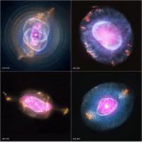 """<p><a class=""""tumblr_blog"""" href=""""http://pictures-of-space.tumblr.com/post/145426082886"""">pictures-of-space</a>:</p> <blockquote> <p><b>  A Planetary Nebula Gallery (NASA, Chandra, 10/10/12)  <br/></b></p> <p>  This gallery shows four planetary nebulas from the first systematic survey of such objects in the solar neighborhood made with NASA's Chandra X-ray Observatory. The planetary nebulas shown here are NGC 6543, also known as the Cat's Eye, NGC 7662, NGC 7009 and NGC 6826. In each case, X-ray emission from Chandra is colored purple and optical emission from the Hubble Space Telescope is colored red, green and blue.  <br/></p> <p>  Image credit: X-ray: NASA/CXC/RIT/J.Kastner et al.; Optical: NASA/STScI  <br/></p> </blockquote>: CAT'S EYE  NGC 7662  NGC 7009  NGC 6826 <p><a class=""""tumblr_blog"""" href=""""http://pictures-of-space.tumblr.com/post/145426082886"""">pictures-of-space</a>:</p> <blockquote> <p><b>  A Planetary Nebula Gallery (NASA, Chandra, 10/10/12)  <br/></b></p> <p>  This gallery shows four planetary nebulas from the first systematic survey of such objects in the solar neighborhood made with NASA's Chandra X-ray Observatory. The planetary nebulas shown here are NGC 6543, also known as the Cat's Eye, NGC 7662, NGC 7009 and NGC 6826. In each case, X-ray emission from Chandra is colored purple and optical emission from the Hubble Space Telescope is colored red, green and blue.  <br/></p> <p>  Image credit: X-ray: NASA/CXC/RIT/J.Kastner et al.; Optical: NASA/STScI  <br/></p> </blockquote>"""
