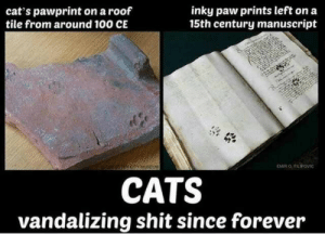 Anaconda, Cats, and Funny: cat's pawprint on a roof  tile from around 100 CE  inky paw prints left on a  15th century manuscript  EMİR O. FL  CATS  vandalizing shit since forever Cats Vandalising Since Forever via /r/funny https://ift.tt/2HTH9kh