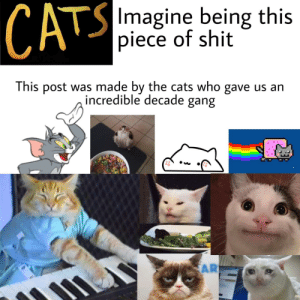 The movie was a mistake: CATS  SImagine being this  piece of shit  This post was made by the cats who gave us an  incredible decade gang  AR The movie was a mistake