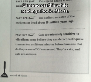 Cats Are Assholes: Cats spend  FACT 575  waki Came across this while  readingabookoffacts.  The earliest ancestor of the  FACT 576  modern cat lived about 30 million years ago.  FACT 577 E Cats are extremely sensitive to  vibrations; some believe they can detect earthquake  tremors ten or fifteen minutes before humans. But  do they warn us? Of course not. They're cats, and  cats are assholes.  As6  scared sh'tless