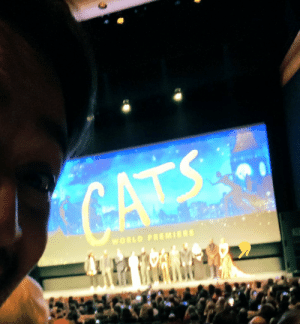 A selfie with Taylor ARE YOU MONSTERS HAPPY NOW https://t.co/dBIwuI7eFp https://t.co/LzMf69CnMR: CATS  WORLD PREMIERE A selfie with Taylor ARE YOU MONSTERS HAPPY NOW https://t.co/dBIwuI7eFp https://t.co/LzMf69CnMR