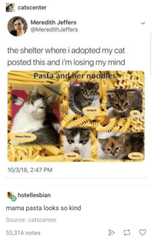 Lasagna, Mind, and Her: catscenter  Meredith Jeffers  @MeredithJeffers  the shelter where i adopted my cat  posted this and i'm losing my mind  Pasta and her noodles  Lasagna  ziti  Mama Pasta  Raviol  Penne  10/3/18, 2:47 PM  hotellesbian  mama pasta looks so kind  Source: catscenter  53,316 notes Mama pasta looking so kind