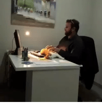 Target, Tumblr, and Blog: catstextposts: Working from home