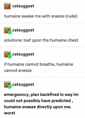 : catsuggest  humaine awake me with sneeze (rude)  catsuggest  solutione: loaf upon the humaine chest  catsuggest  if humaine cannot breathe, humaine  cannot sneeze  catsuggest  emergeoncy, plan backfired in way im  could not possibly have predicted,  humaine sneeze directly upon me.  worst