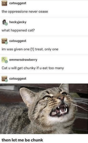 Mood, Never, and Only One: catsuggest  the oppressione never cease  heckyjecky  what happened cat?  catsuggest  im was given one (1) treat. only one  emmersdrawberry  Cat u will get chunky if u eat too many  catsuggest  then let me be chunk a feedism mood