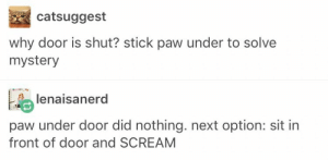 Scream, Good, and Mystery: catsuggest  why door is shut? stick paw under to solve  mystery  lenaisanerd  paw under door did nothing. next option: sit in  front of door and SCREAM Inquisitive good boye