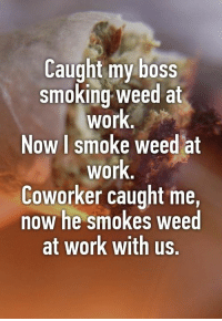 That's how it goes! 😎: Caught my boss  smoking weed at  work  Now I smoke weed at  work  Coworker caught me,  now he smokes weed  at work with us.  lW That's how it goes! 😎