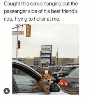 he cute so...: Caught this scrub hanging out the  passenger side of his best friend's  ride, Trying to holler at me.  SaVER CITY  BCAPE  ONELE  PO5-319-8677  AFY he cute so...