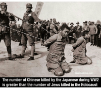 A little known fact in the world of history and education. The Germans where allied with the Nationalist Chinese army in the very early stages of the Japanese-Chinese War. As we all know they pulled out of the alliance and cut their loses by bringing in Japan. Around 10 Million Chinese military casualties. 17-22 million Chinese civilians where killed by the Japanese. Something we have just let go historiansunion wwii worldwar2 history ww2 history japanmilitary: CavemanCircus.com  The number of Chinese killed by the Japanese during WW2  is greater than the number of Jews killed in the Holocaust A little known fact in the world of history and education. The Germans where allied with the Nationalist Chinese army in the very early stages of the Japanese-Chinese War. As we all know they pulled out of the alliance and cut their loses by bringing in Japan. Around 10 Million Chinese military casualties. 17-22 million Chinese civilians where killed by the Japanese. Something we have just let go historiansunion wwii worldwar2 history ww2 history japanmilitary