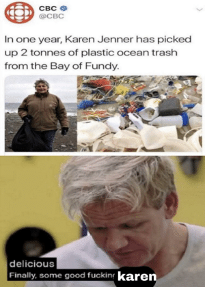 Ramsey's approval: CBC  @CBC  In one year, Karen Jenner has picked  up 2 tonnes of plastic ocean trash  from the Bay of Fundy.  delicious  Finally, some good fucking karen Ramsey's approval