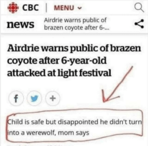 Disappointed, News, and Coyote: CBC | MENU  Airdrie warns public of  brazen coyote after 6.  news  Airdrie warns public of brazen  coyote after 6-year-old  attacked at light festival  Child is safe but disappointed he didn't turn  into a werewolf, mom says OH WELL, BETTER LUCK NEXT TIME