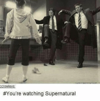 Memes, Tumblr, and Supernatural: ccrowleys:  You're watching Supernatural Remember when this was the welcome to tumblr photo on tumblrs main page