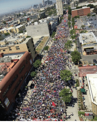 """This is what people power looks like! This is what democracy looks like! This is what the resistance looks like! ✊🏾✊🏿✊🏽✊🏻 """"10,000 Sisters & Brothers marching side by side to raise up all working families!"""" via @seiu721 - resistLA MayDay InternationalWorkersDay MayDay2017 resist HereToStay theresistance: cDonaldS This is what people power looks like! This is what democracy looks like! This is what the resistance looks like! ✊🏾✊🏿✊🏽✊🏻 """"10,000 Sisters & Brothers marching side by side to raise up all working families!"""" via @seiu721 - resistLA MayDay InternationalWorkersDay MayDay2017 resist HereToStay theresistance"""