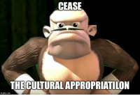 Asian, Wtf, and Slav: CEASE  THE CULTURAL APPROPRIATILON  imgflip.com