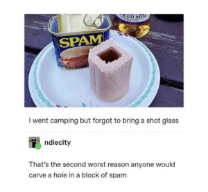 Reason, Spam, and Glass: CED RUM  SPAM  I went camping but forgot to bring a shot glass  ndiecity  That's the second worst reason anyone would  carve a hole in a block of spam  dill Deconstructed Rum Ham