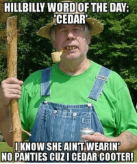Mexican Word of the Day, Cedar, and Panty: CEDAR'  I KNO  SHE AINTWEARINT  NO PANTIES CUZI CEDAR COOTER!