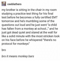 """there's no protocol for monkeys"" should be the tagline for a future planet of the apes tbh - Max textpost textposts: ceeblathers  my brother is sitting in the chair in my room  studying a practice test thing for his final  test before he becomes a fully certified EMT  tomorrow and he's mumbling some of the  questions out loud and he just went ""a child  has fallen from a monkey at school.."" and he  just got dead quiet and stared at the wall for  like a solid minute with the most stricken look  on his face before he whispered ""there's no  protocol for monkeys""  bro  bro it means monkey bars ""there's no protocol for monkeys"" should be the tagline for a future planet of the apes tbh - Max textpost textposts"
