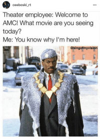 Blackpeopletwitter, Movie, and Today: ceeboski rt  Theater employee: Welcome to  AMC! What movie are you seeing  today?  Me: You know why I'm here!  @kingofmyvision <p>You Already Know (via /r/BlackPeopleTwitter)</p>