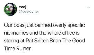 Hahahaha!: ceej  @ceejoyner  Our boss just banned overly specific  nicknames and the whole office is  staring at Rat Snitch Brian The Good  Time Ruiner. Hahahaha!