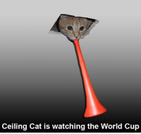 ceiling cat is watching: Ceiling Cat is watching the World Cup