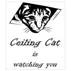 Ceiling Cat is Watching You Poster: Ceiling Cat  is  watching you Ceiling Cat is Watching You Poster