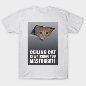 Ceiling Cat - Ceiling Cat Is Watching You Memes - T-Shirt | TeePublic: CEILING CAT  IS WATCHING YOU  MASTURBATE Ceiling Cat - Ceiling Cat Is Watching You Memes - T-Shirt | TeePublic