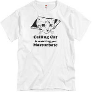 Ceiling Cat Is Watching Unisex Basic Promo T-Shirt: Ceiling Cat  is watching you  Masturbate Ceiling Cat Is Watching Unisex Basic Promo T-Shirt