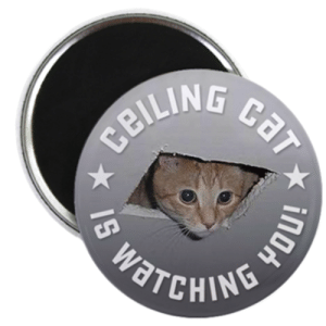 CEILING CAT is watching YOU! Magnet > Ceiling Cat is Watching YOU ...: CEILING CaT  WATCHING YOU CEILING CAT is watching YOU! Magnet > Ceiling Cat is Watching YOU ...