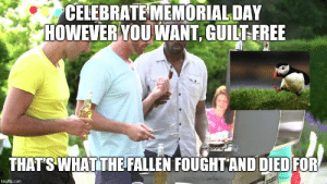 Memorial Day Weekend Meme: CELEBRATE MEMORIAL DAY  HOWEVER YOUWANT, GUILT FREE  THAT S WHATTHEFALLEN FOUGHTAND DIEDFOR  imgflip.com