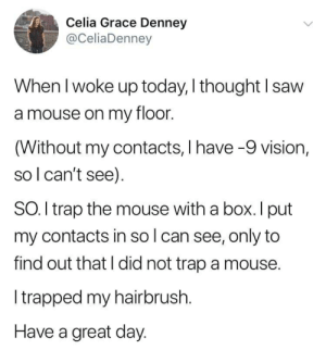 Celia: Celia Grace Denney  @CeliaDenney  When I woke up today, I thought I saw  a mouse on my floor.  (Without my contacts, I have -9 vision,  so l can't see)  SO. I trap the mouse with a box. I put  my contacts in so l can see, only to  find out that I did not trap a mouse.  Itrapped my hairbrush.  Have a great day.